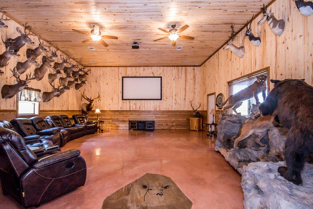 'man cave' with 120' projection screen TV